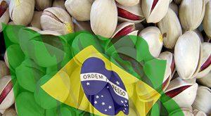 صادرات پسته به برزیل