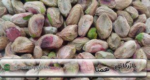 قیمت مغز پسته در رفسنجان