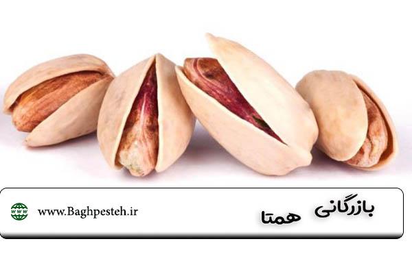 قیمت پسته اکبری 1400